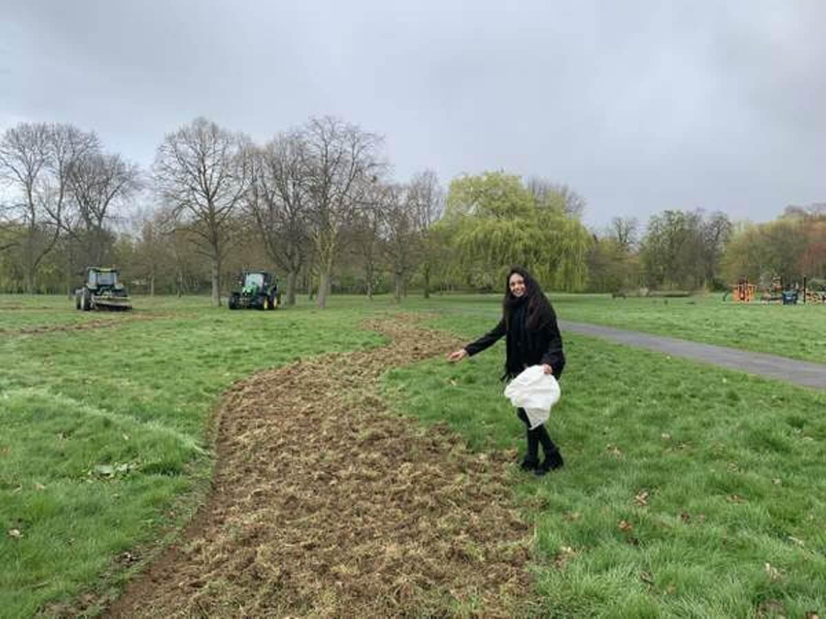 cllr krupa sheth flores - Bairro em Londres vai criar 11km de corredor de flores para abelhas
