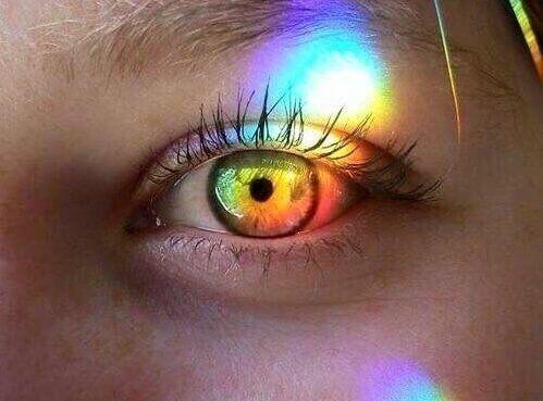 olho iluminado - A pessoa altamente sensível em uma família emocionalmente negligente