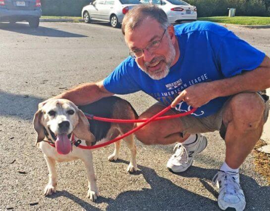 abrigo 2 - Aposentado abre abrigo para cães idosos abandonados