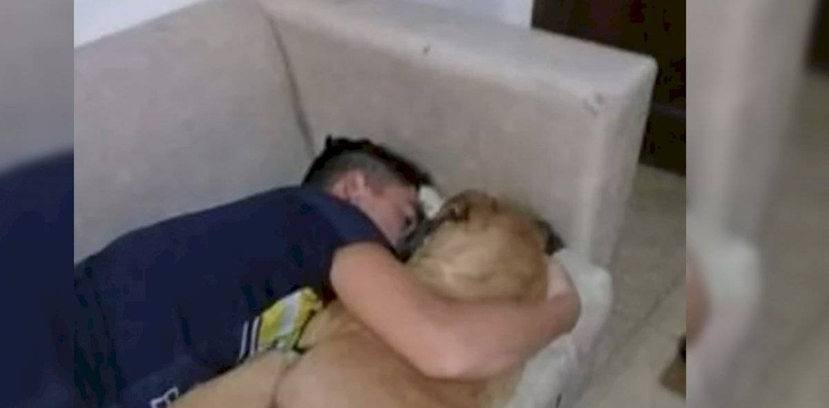 1 1 - Cadela morreu abraçada ao dono com medo dos fogos de artifício