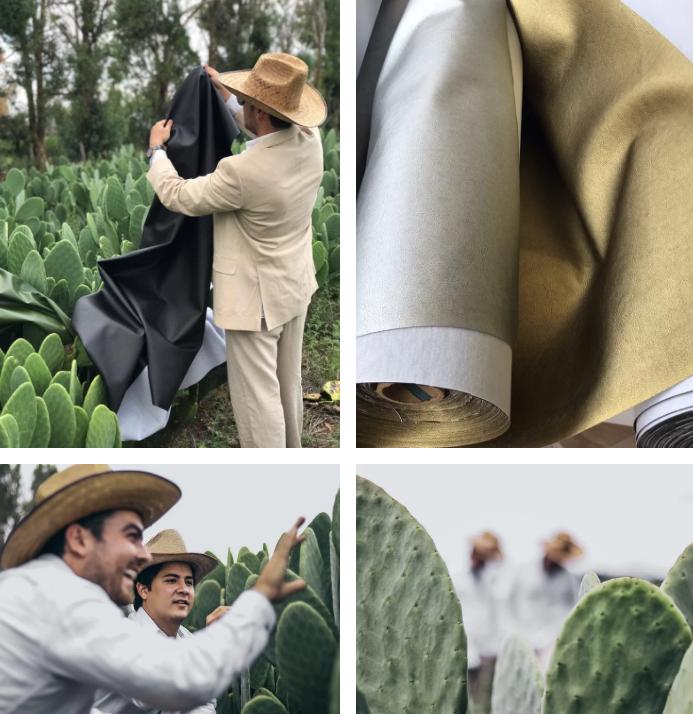 """Pele 1 - Em substituição ao couro animal, mexicanos criaram a """"pele"""" de cacto"""