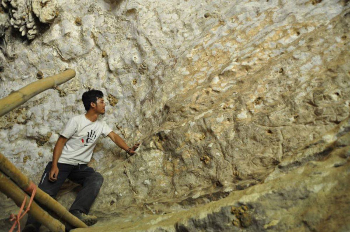 U2NNQ2JK3RRITMCYM7ACTQBGGQ scaled - Obra de arte mais antiga da humanidade é descoberta na Indonésia