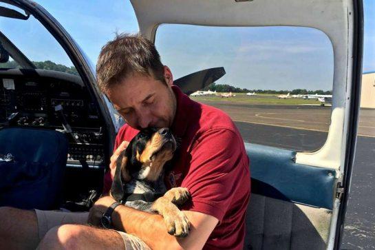 eutanasia 1 - Homem comprou avião para salvar da eutanásia cães e gatos