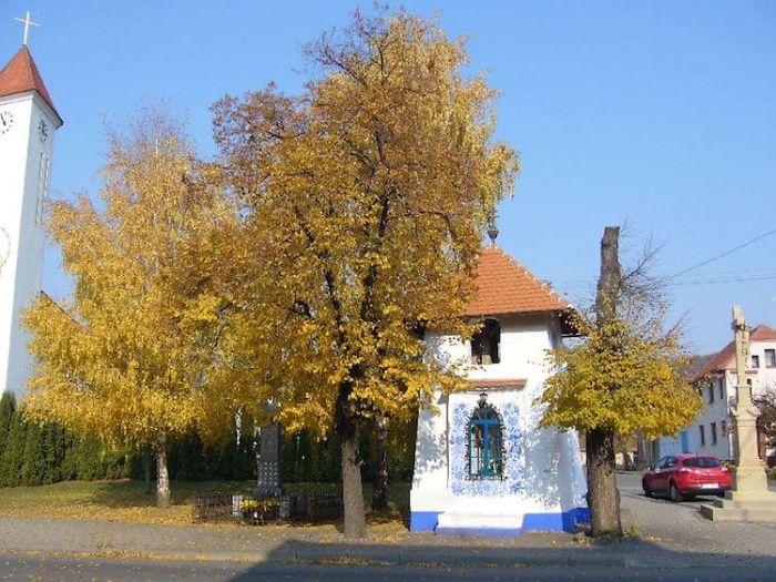 15 - Avó tcheca de 90 anos transforma pequena vila em sua galeria de arte pintando flores em suas casas