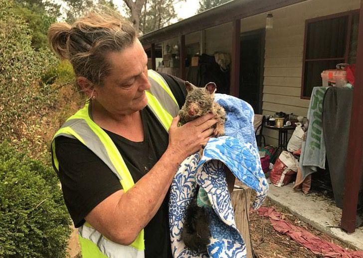 Captura de Pantalla 2020 01 02 a las 16.44.11 - Voluntários na Austrália arriscam suas vidas pelos animais.