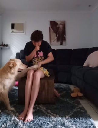 marley helps hayley 5 - Cachorro acalma amorosamente jovem autista que se debatia numa crise de pânico
