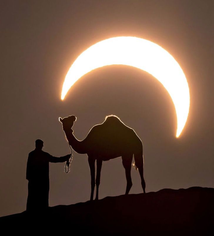 Captura de Pantalla 2020 01 27 a las 10.53.16 - Fotógrafo capturou a imagem perfeita de um homem e um camelo sob um eclipse lunar.