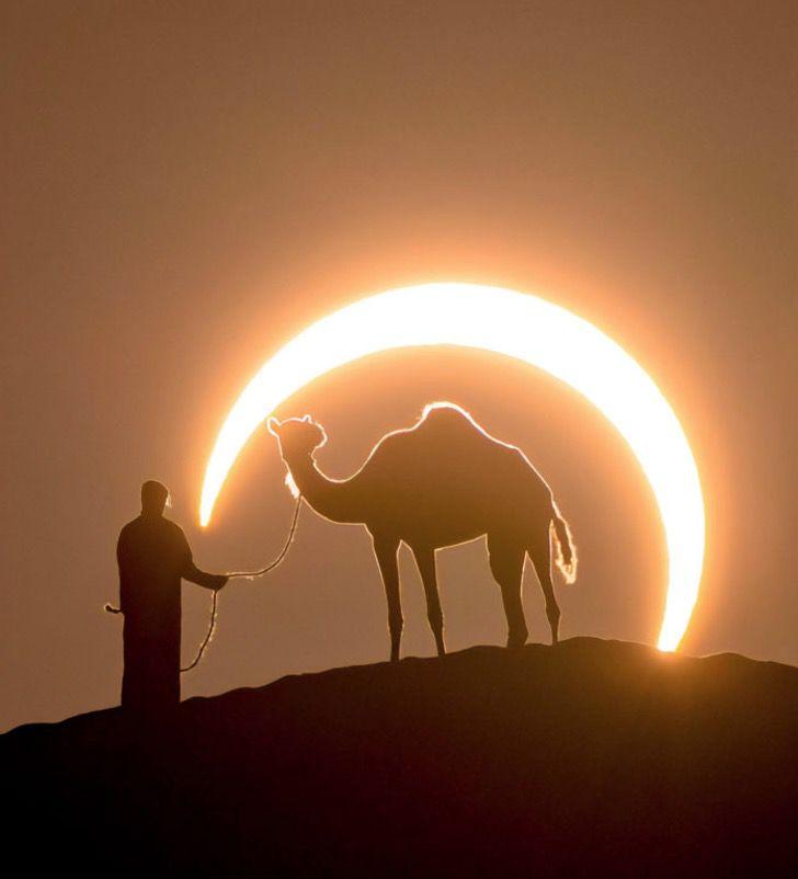 Captura de Pantalla 2020 01 27 a las 10.53.30 - Fotógrafo capturou a imagem perfeita de um homem e um camelo sob um eclipse lunar.