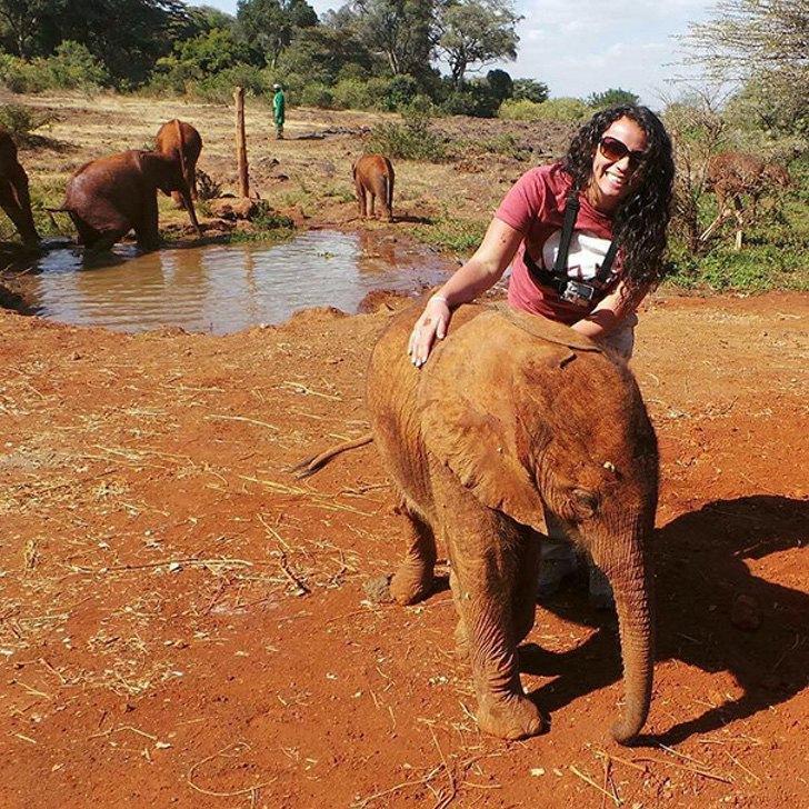 ostrich snuggles orphaned elephants 4 - Elefante órfão se une diariamente com um avestruz para brincar. Ele perdeu a mãe, mas ganhou um amigo!