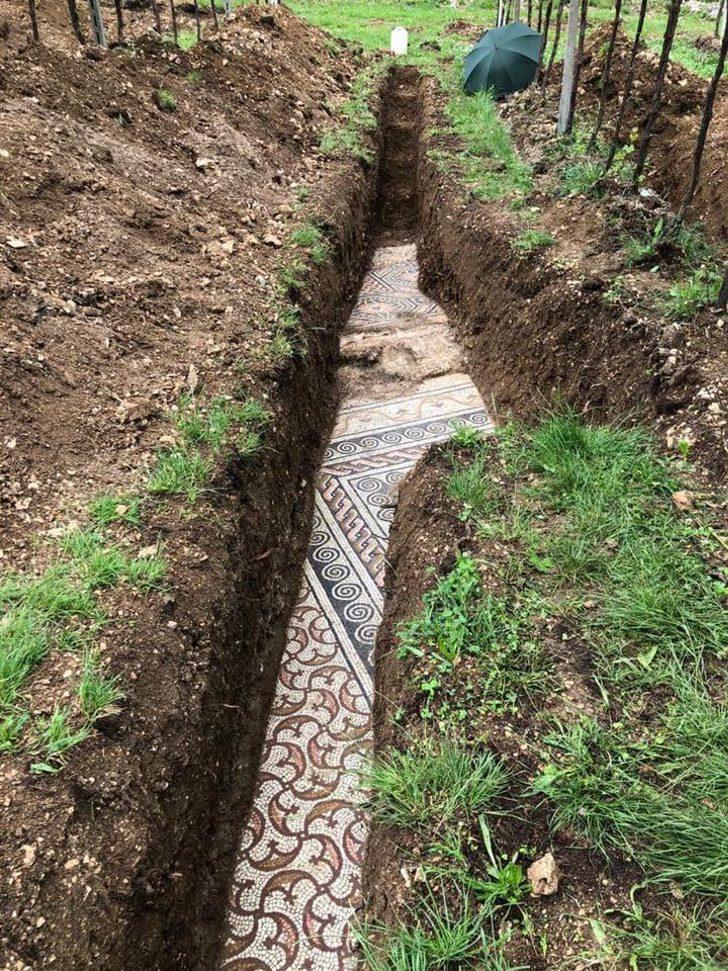 5lcbk mosaic of roman village discovered 1 1 - Arqueólogos descobrem mosaicos romanos em um antigo vinhedo na Itália. Eles são tesouros da humanidade