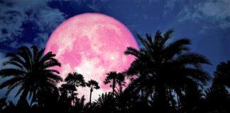 pink moon.jpg.optimal 324x160 - Início