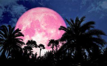 pink moon.jpg.optimal 356x220 - Início