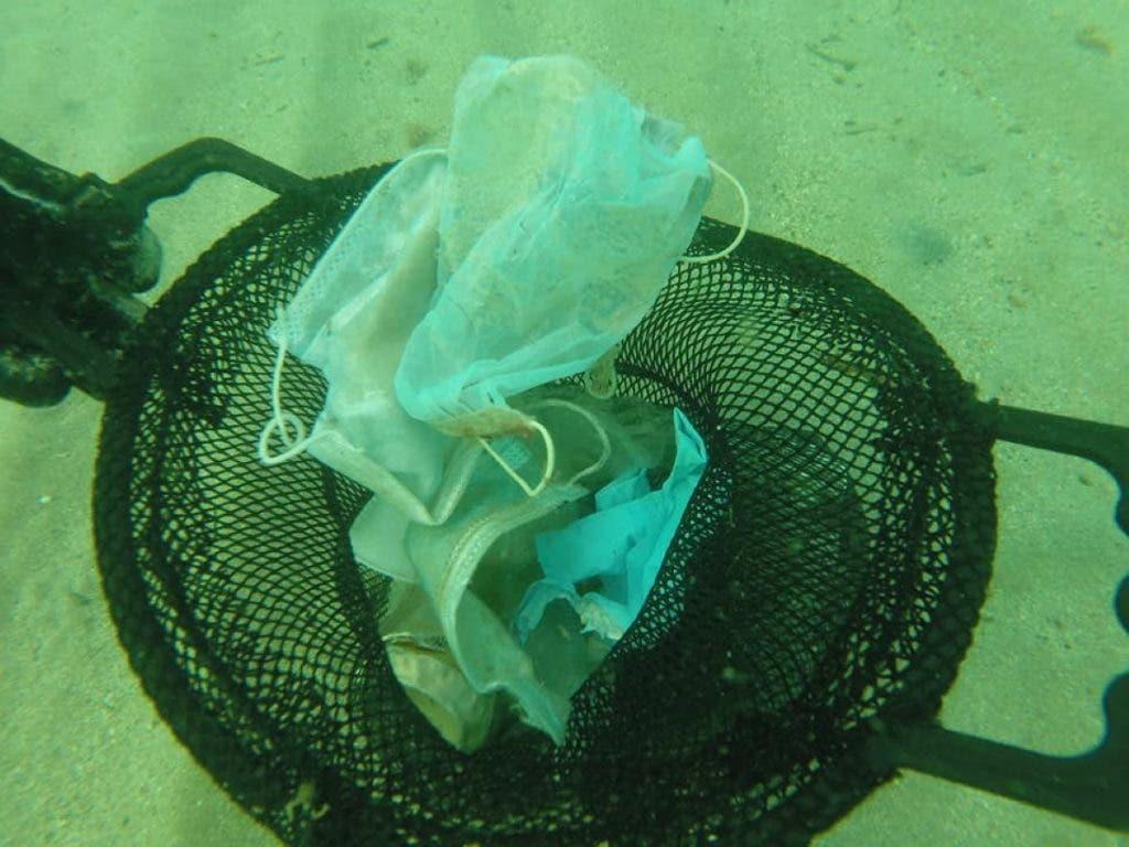 mascherine mare 1024x768 1 - Brevemente no Mediterrâneo terá  mais máscaras e luvas do que águas-vivas: tristes imagens do fundo do mar da Riviera Francesa.