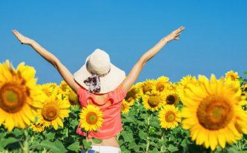 mulher feliz com chapeu de palha no campo de girassol 79075 91 356x220 - Início