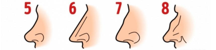 naso personalità 2 - Teste de personalidade - O formato do seu nariz pode revelar muito sobre sua personalidade.