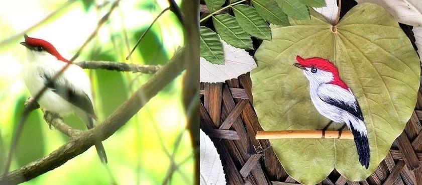 obra folha3 - Aves brasileiras bordadas em folhas secas, aprecie esta arte!