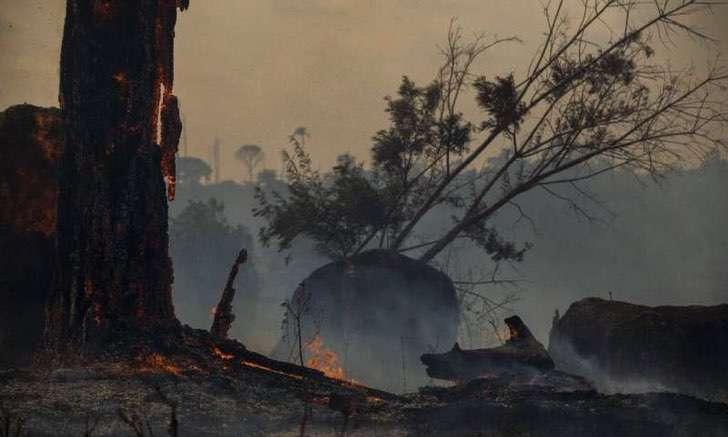 """amazonas junio incendios forestales 1 - A Amazônia """"pulmão verde"""" da América é consumido pouco a pouco."""