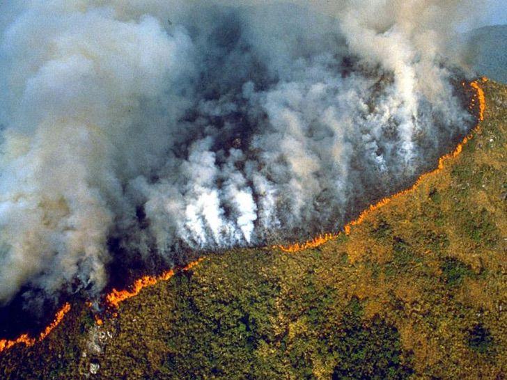 """amazonas junio incendios forestales 2 - A Amazônia """"pulmão verde"""" da América é consumido pouco a pouco."""