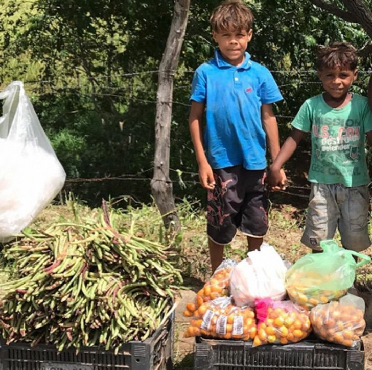 irmaosfeijão 423x420 1 - Irmãos que vendiam legumes na estrada vão à escola pela 1ª vez. Eles têm uma casa nova