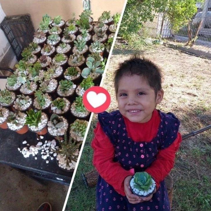 Captura de Pantalla 2020 08 14 a las 15.55.13 - Uma menina de 3 anos vende plantas para pagar seu tratamento de leucemia. Cada venda é uma alegria