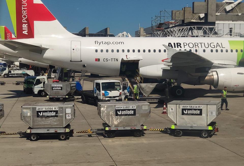 """aircraft 5352581 960 720 - """"Não somos bagagem, somos seres vivos"""": começa campanha pedindo que os bichinhos viajem na cabine com seus donos"""