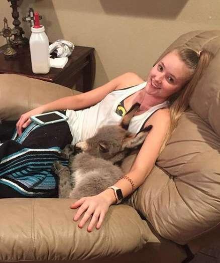 """1564859035 5d45da9b2ca85 - Uma estudante americana praticamente se tornou uma """"mamãe"""" adotiva de um burrinho abandonado"""