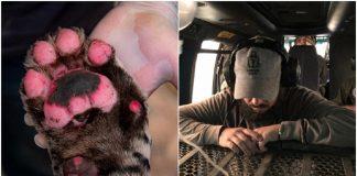 Veterinário de Jundiaí (SP) ajuda no resgate de animais vítimas das queimadas no Pantanal — Foto: Arquivo pessoal