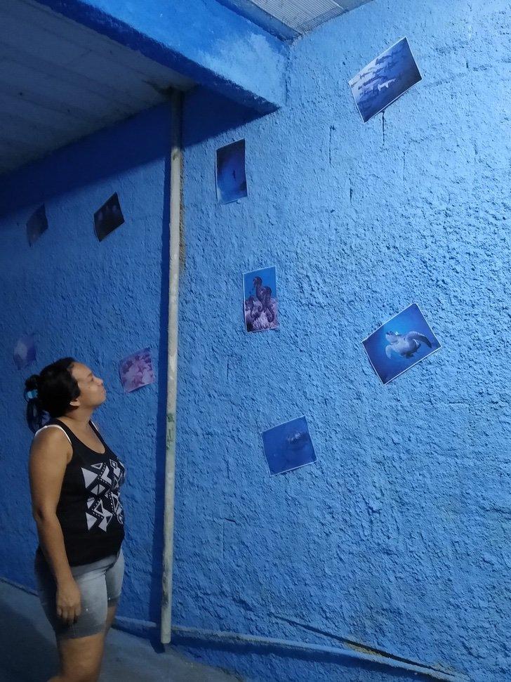 EXCufh3XgAAgukA - Ele pintou suas paredes como se fossem o mar para sua esposa que não podia ir à praia. Fotos marinhas coladas