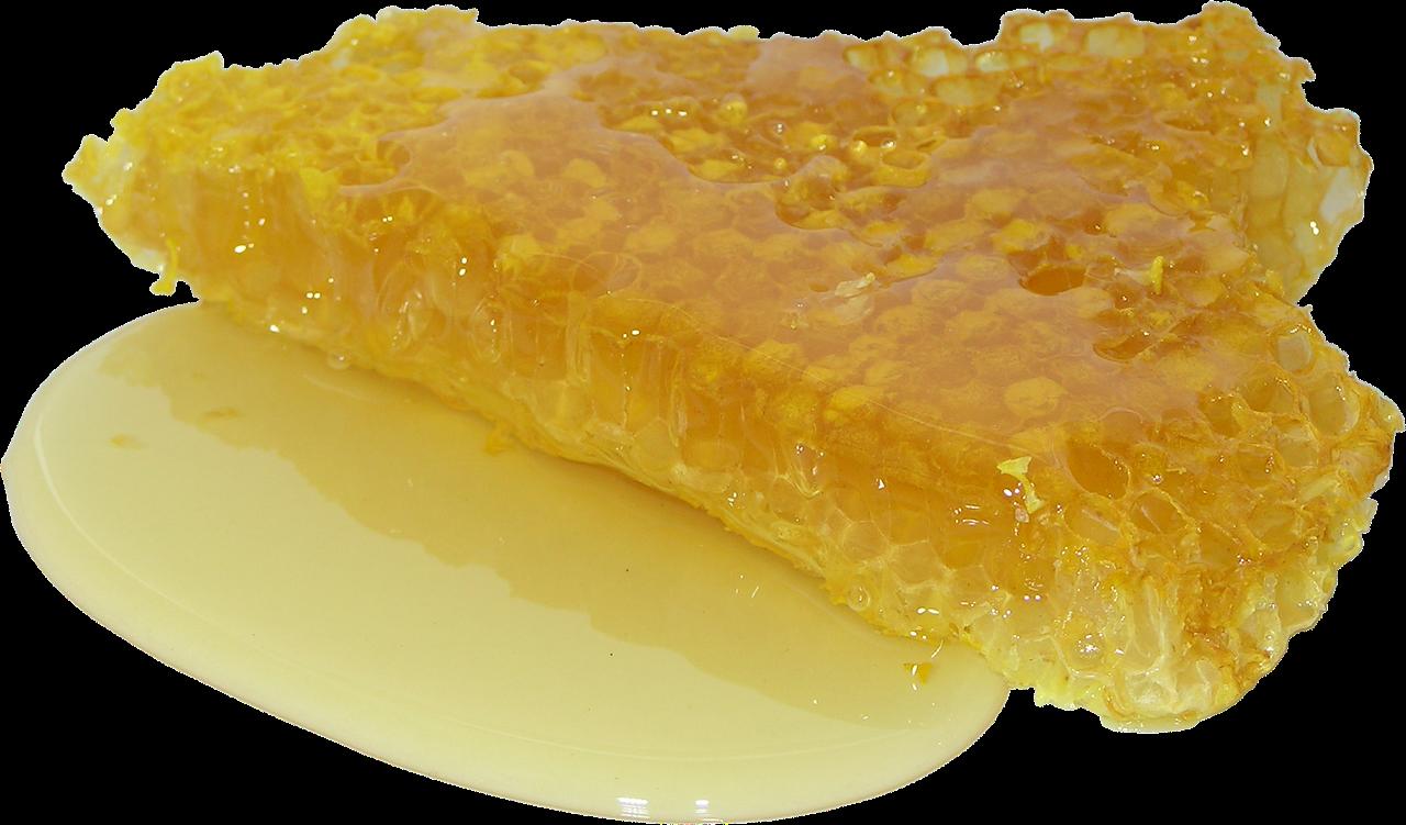 honey 2201210 1280 - Adesivo feito com mel para diabéticos consegue regenerar a pele em 21 dias: Gratuito