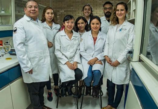 mel curativo equipe interna - Adesivo feito com mel para diabéticos consegue regenerar a pele em 21 dias: Gratuito