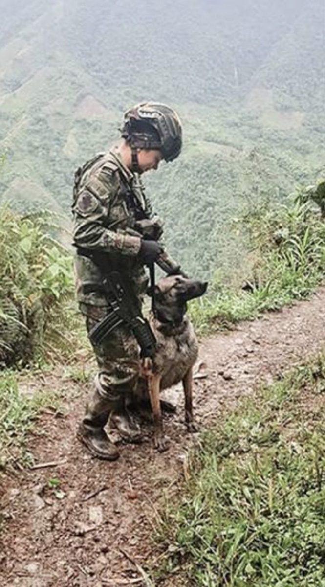 2 4 scaled - Pela primeira vez, uma mulher comanda as tropas do exército colombiano na selva. É a senhora de ferro!