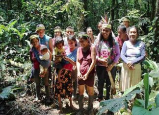 amazonia equatoriana capa2 696x487 1 324x235 - Início