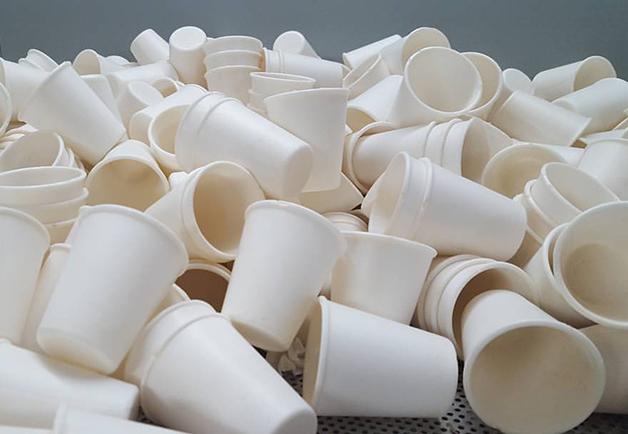 2 14 - Startup usa mandioca para fabricar embalagens 100% biodegradáveis