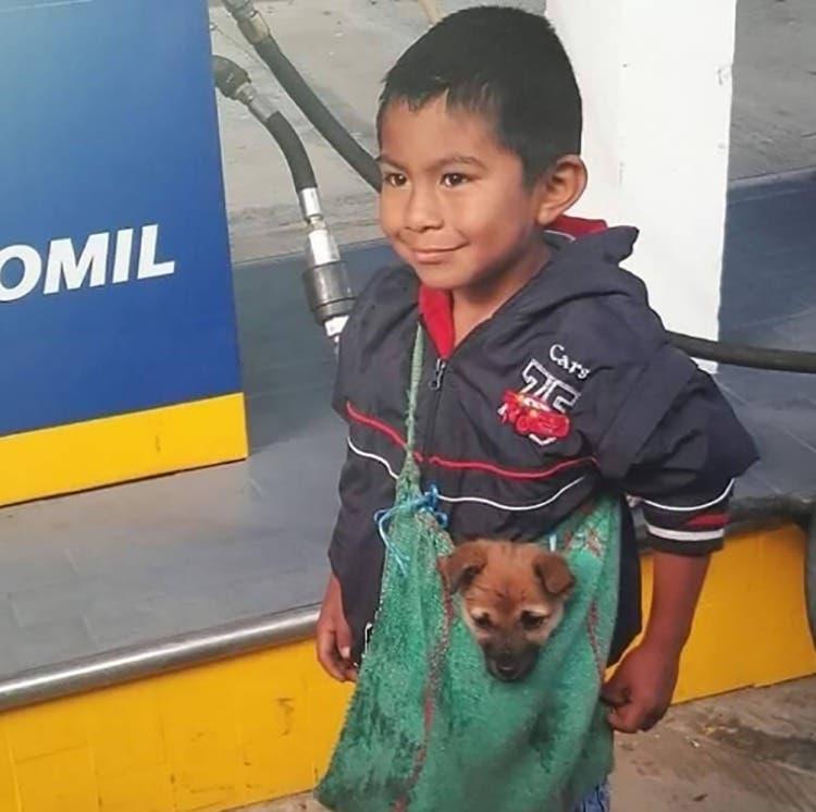 1 7 - Imagem de menino humilde que é ambulante e leva seu cachorrinho numa bolsa emociona os internautas