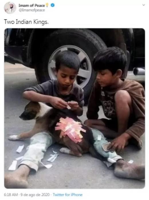 """Captura de Tela 187 - Crianças encantam os internautas ao usarem """"band-aid"""" para cobrir ferimentos de um cachorro"""