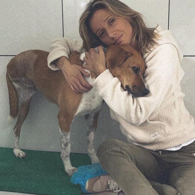 Captura de Tela 327 - Luisa Mell acolhe cachorra rejeitada por não ter uma das patas