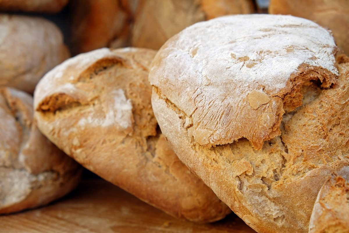 bread 2193537 1280 scaled - Adolescente usa um carrinho de mão para vender pão caseiro. Contribui para as despesas de sua casa!